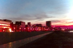 avond©Katrien Meganck